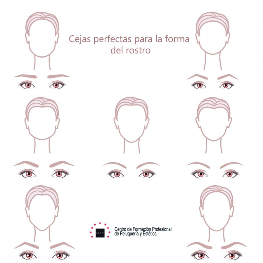 ingografia cejas perfectas forma rostro