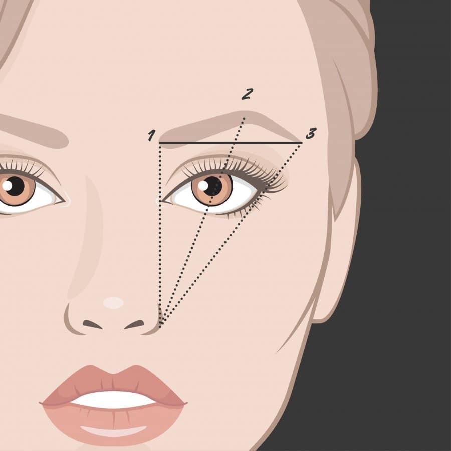 cejas forma rostro